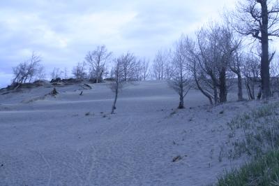dunes1
